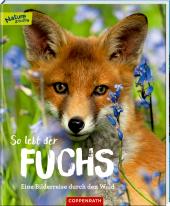 So lebt der Fuchs: Eine Bilderreise durch den Wald