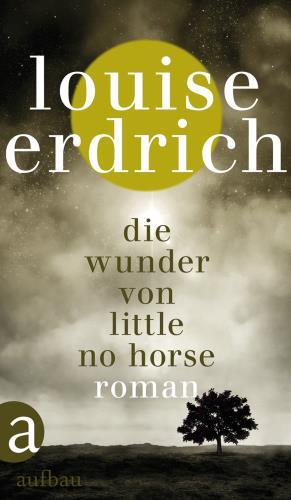 Die Wunder von Little No Horse