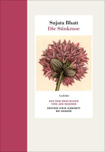 Die Stinkrose