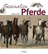 Faszination Pferde