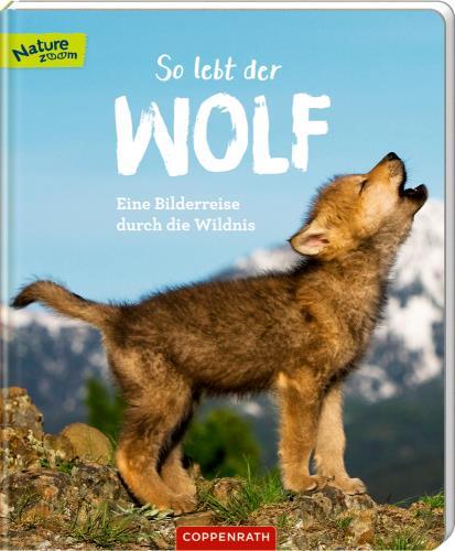 So lebt der Wolf