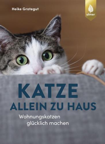 Katze allein zu Haus