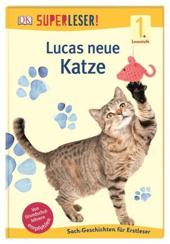 Lucas neue Katze