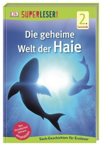 Hai-Abenteuer am Riff