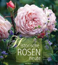Historische Rosen heute