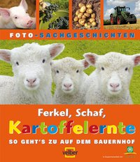 Ferkel, Schaf, Kartoffelernte